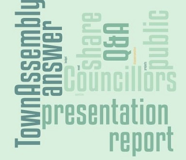 Town Assembly wordcloud